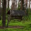 Orzeszkowskie ścieżki nordic walking