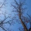 Z Krzelowa do Słupa przez pola i lasy